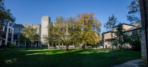 View of the college quad looking at the Hilda Besse and Nissan buildings behind several trees.